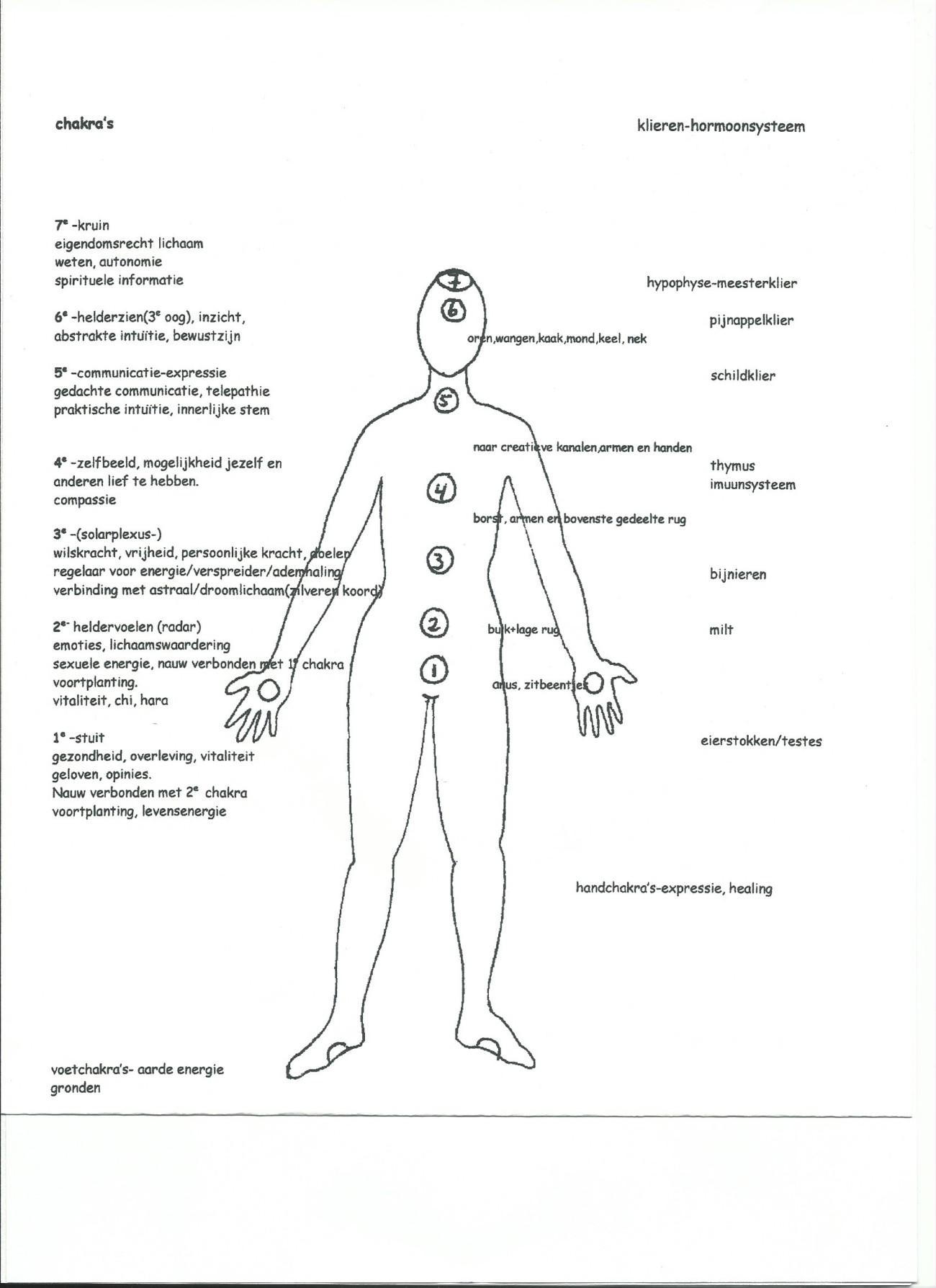 chakra's in een lichaam